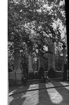 Salve Regina College Undergraduate Catalog 1962-1963