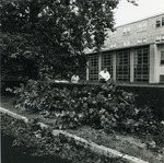 Cleanup at Miley Hall