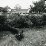 North/South Hall grounds after Hurricane Bob