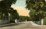 Bellevue Ave., Newport, R. I.