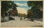Bellevue Ave., Newport's Popular Driveway. Newport, R. I.