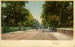 Bellevue Avenue, Newport, R. I.