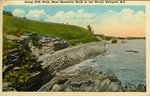 Along Cliff Walk, Most Beautiful Walk in the World, Newport, R.I. by Herz Bros.