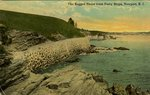 The Rugged Shore from Forty Steps, Newport, R.I.