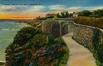 Along Famous Cliff Walk, Newport, R.I. by H.B. Settle Co.