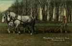 Ploughing on Vanderbilt's Farm. Portsmouth, R.I.